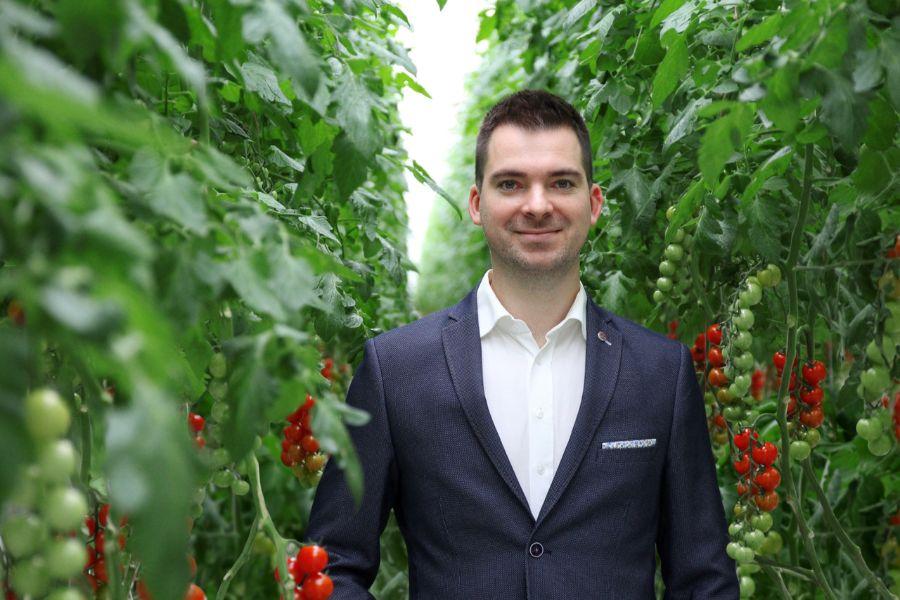 Slováci vypestovali paradajky sladšie ako jahoda. Vďaka skleníkom ich môžete mať doma kedykoľvek